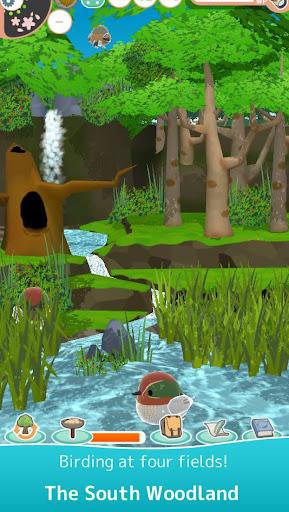 Tori Watch 2 - fluffy small birds - ss2