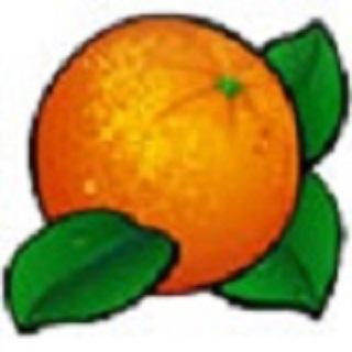 Mega Fruit Slots