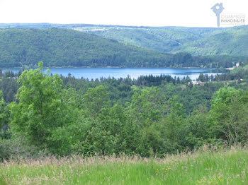 terrain à Le Lac-d'Issarlès (07)