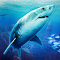 VR Abyss: Sharks & Sea Worlds HD file APK Free for PC, smart TV Download