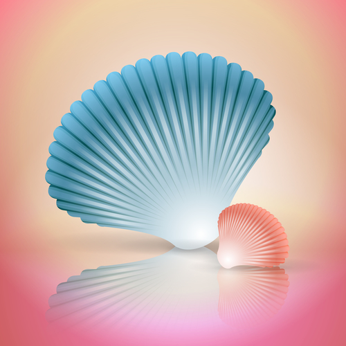 Seashell Water Touch Lwp