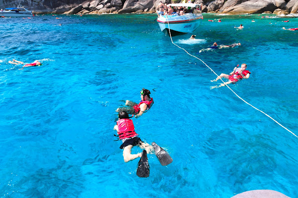 Make 2 snorkel stops with friendly sea turtles and colorful fish
