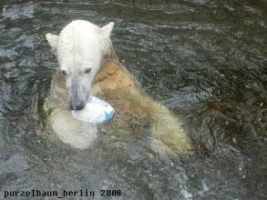 Photo: Kurzer Ausflug ins Wasser mit dem Ball ;-)