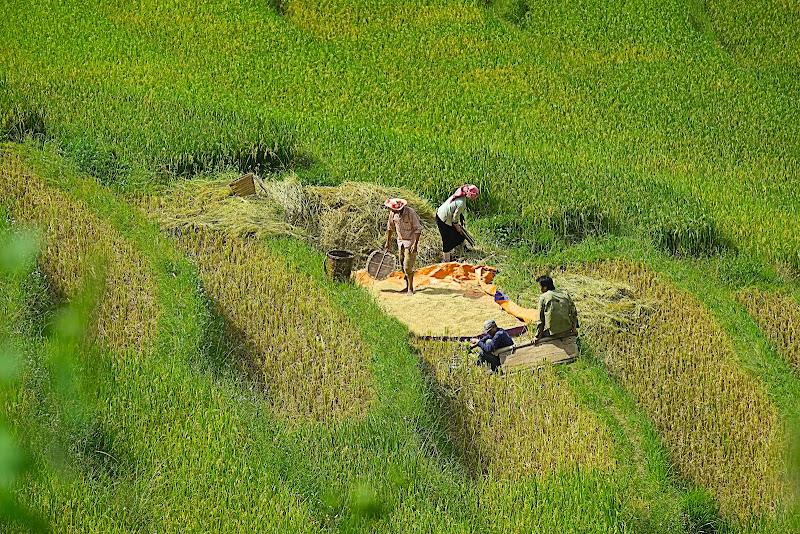 Vietnam, Mu Cang Chai di Zaporogo
