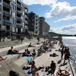 people tanning at sorenga district in Oslo in Oslo, Oslo, Norway