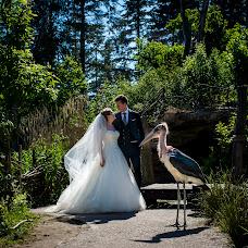 Wedding photographer Corrine Ponsen (ponsen). Photo of 14.02.2018