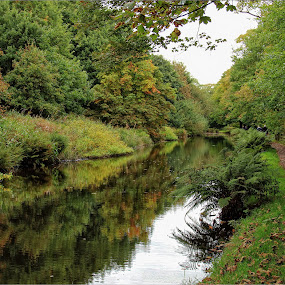 A walk along the Huddersfield Canal by Carol Lauderdale - Landscapes Waterscapes ( waterways, canals, yorkshire, huddersfield narrow canal, places to walk )