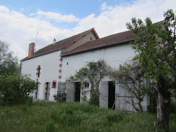 maison à Thauvenay (18)