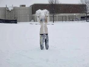 Photo: Snow dayn kunniaksi lähdettiin pulkkamäkeen
