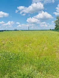 terrain à Reignac-sur-Indre (37)