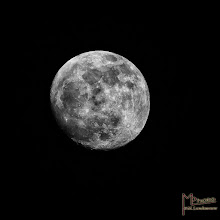 Photo: A shot from the moon in b/w ,a good night to all by #G+ now I must slepp.