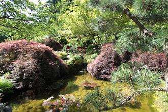 Photo: Butchart Gardens - Japanischer Garten