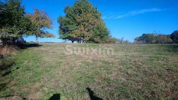 terrain à Auxonne (21)