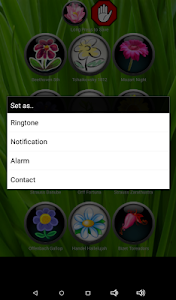 Best Classical Ringtones screenshot 8
