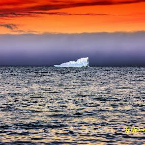 Iceberg by Geoff Gosse - Landscapes Waterscapes ( atlantic ocean, iceberg sunset water ocean fog )