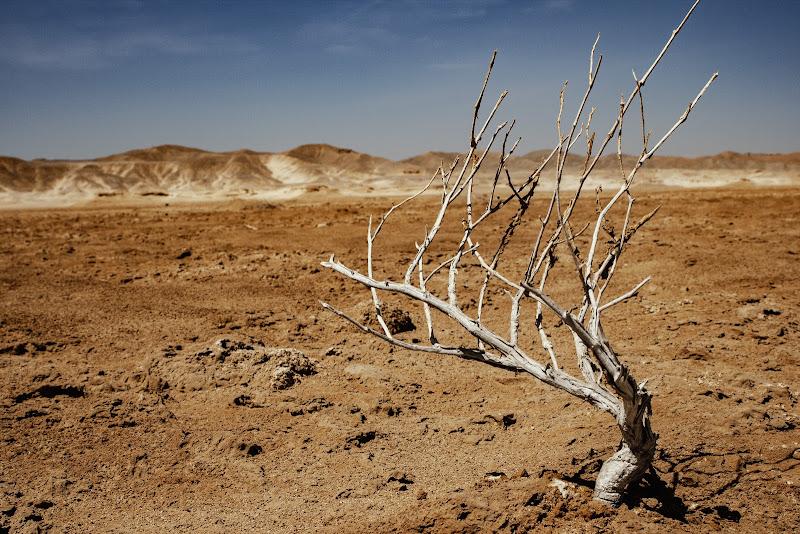 """Quesir,Sahara orientale di albertococco"