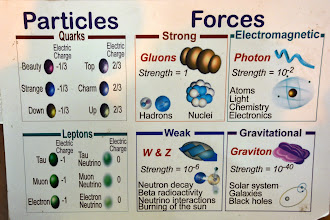 Photo: The fundamental particles of matter