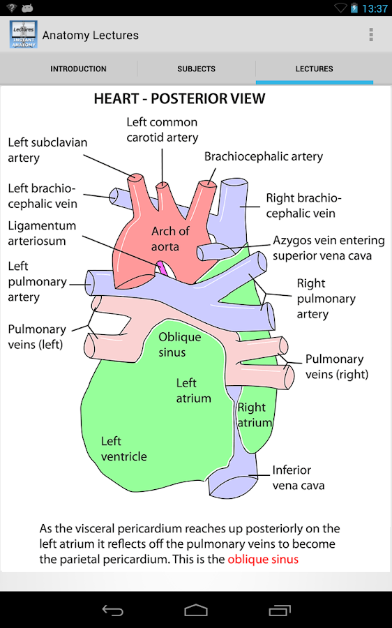 Anatomy Lectures- screenshot