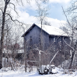 Gooseville Mill on a Cold Day by Jason Lockhart - Buildings & Architecture Decaying & Abandoned ( wisconsin, winter, old mill, snow, gooseville )