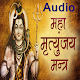 Maha Mrityunjaya Mantra-Audio Download on Windows