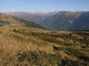 Photo: Alpine grassland above Bettmeralp