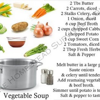 Vegetable Beef Soup Recipe – to Help Get Over Colds & Flu