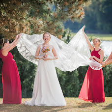 Wedding photographer Olga Molleker (LElik83). Photo of 12.11.2016
