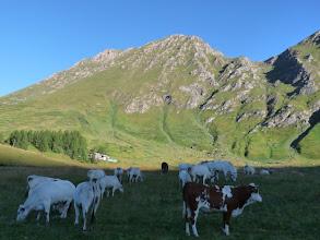 Photo: Pian dell' Alpe