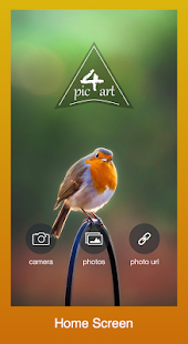 Pic4art Selfies Photo Effect screenshot