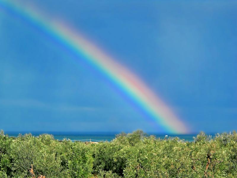 Puglia, dove la natura è colore ! di Pinco_Pallino