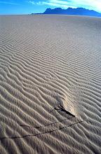 Photo: Kelso Dunes, Mohave Desert National Preserve, California