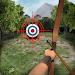 Archery Big Match icon