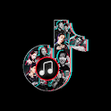 The latest TIK TOK popular ringtones download icon