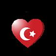 اغاني تركية 2020 بدون نت