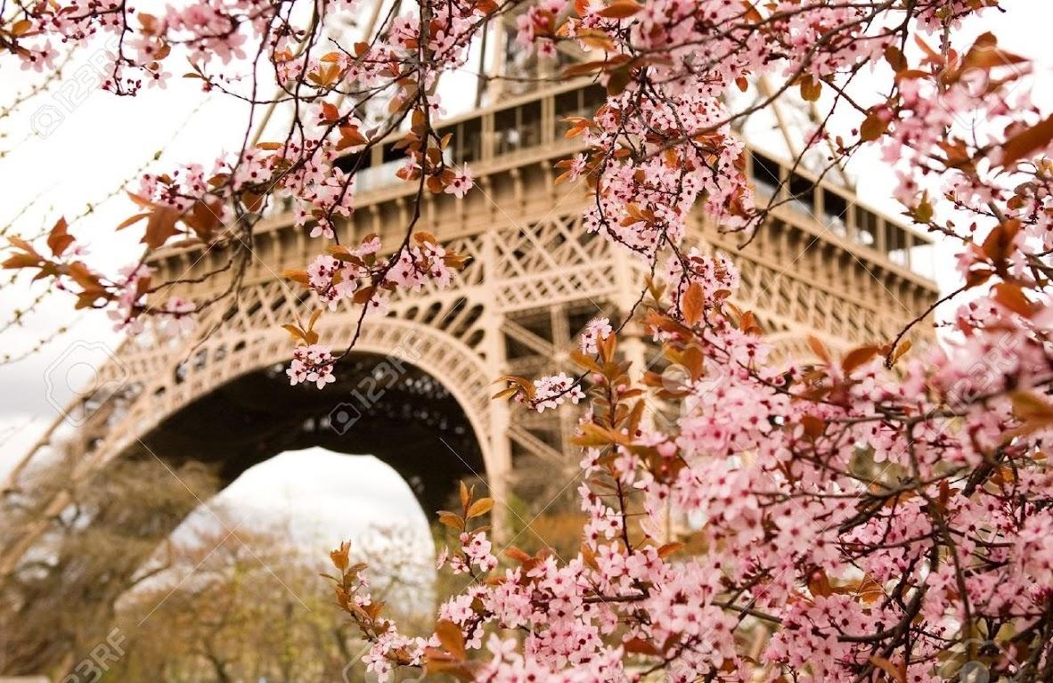 Франция весной, куда поехать весной во Франции, что посмотреть весной во Франции, весна во Франции, весенние фестивали Франция, весенние карнавалы Франция, мероприятия весной во Франции, что посетить весной во Франции, Париж весной, что делать в Париже весной, какая погода в Париже весной