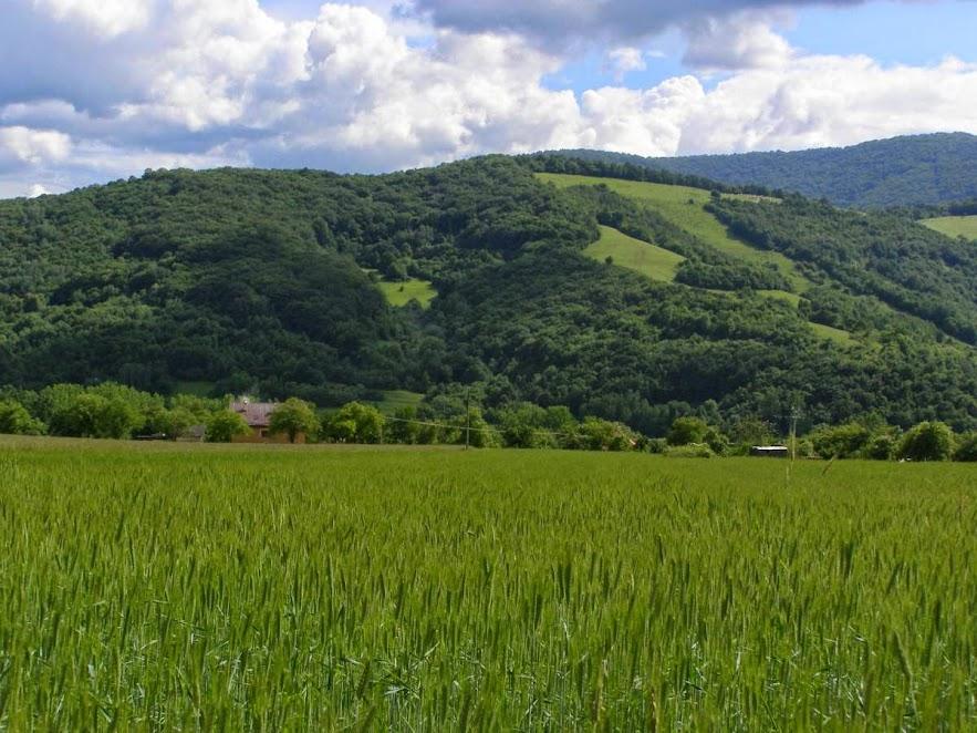 Plesivska planina