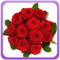 Roses Gallery icon