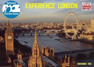 Photo: London Diary (2nd – 8th November 2015)