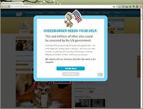 Photo: icanhascheezburger.com