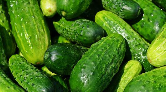 Andalucía bate su récord en exportaciones agroalimentarias con 11.188 millones