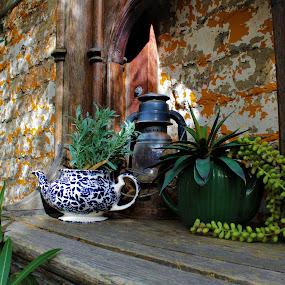 The Shelf by Diane Garcia - Artistic Objects Antiques ( lasvegas, antiques, fremontpark,  )
