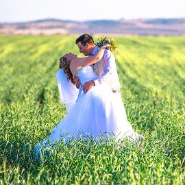 Field of Laughs by Sarah Sullivan - Wedding Bride & Groom ( nikon, sarah sullivan photography, wedding )