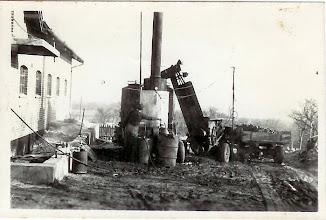 Photo: Kartoffelkogning på Stævnbakgaard, Pederstrup ca. 1955.