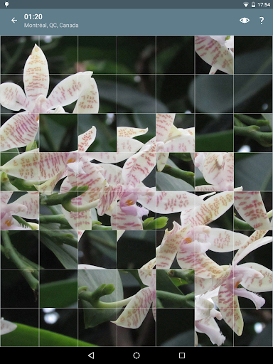 Jigsaw Puzzle: Flowers screenshot 15