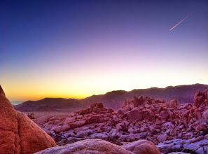 Photo: Sunrise at Joshua Tree