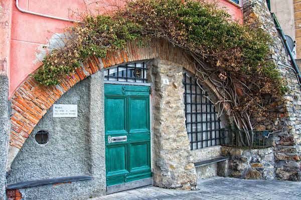 La porta verde di vaiolet