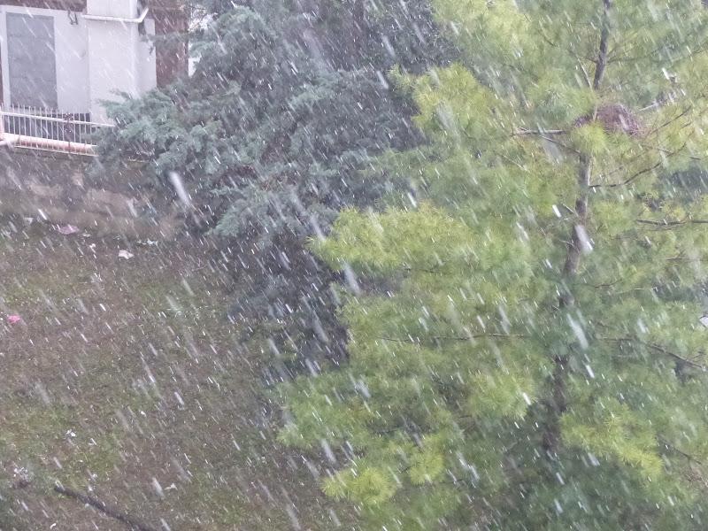 Il peso della pioggia di carm_ian_