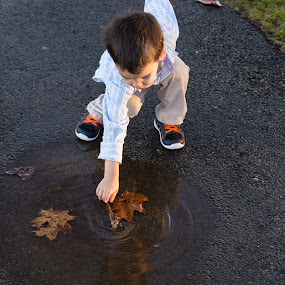 Reaching for a Leaf by Marco Vergara - Babies & Children Children Candids ( reflection, puddle, leaf, boy, kid )