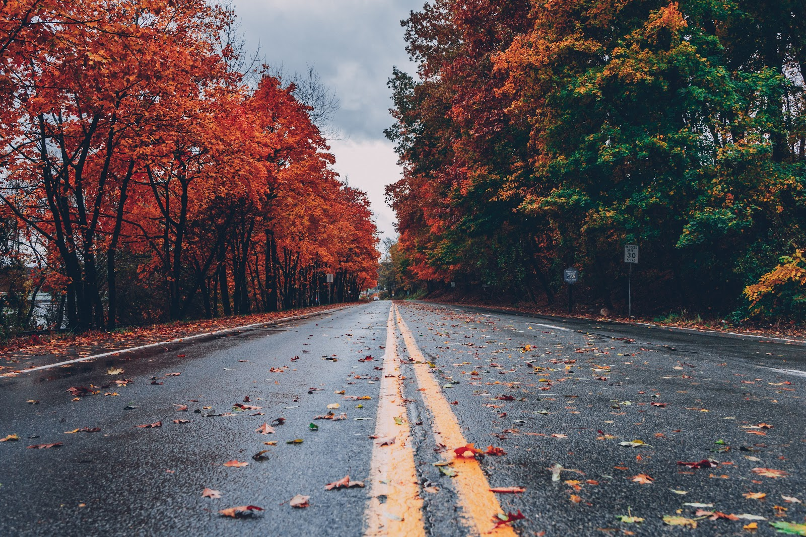 Car Maintenance Tips for the Fall