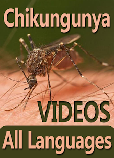 Chikungunya Ka ilaj in All Language - Guide Videos - náhled